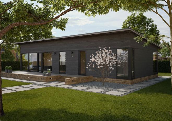 Одноэтажный дом с односкатной крышей и застекленным фасадом.Т052