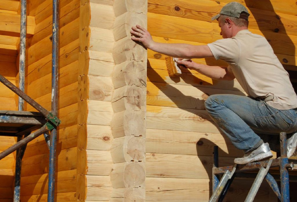 Покрытие дерева лаком - хорошая защита и от вредителей