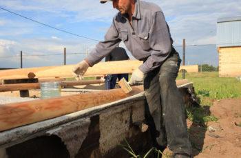 Защита деревянных покрытий от гниения и насекомых-вредителей